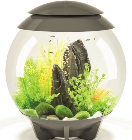 Design Akvarier