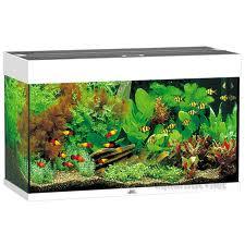 Juwel Akvarier