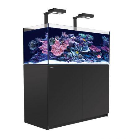 Red Sea akvarium